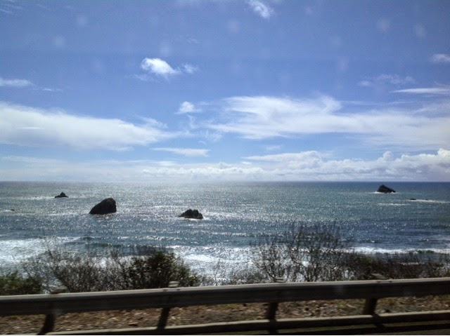 The Pacific Ocean near the Southern Oregon border