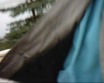 Frey Matthias Bienenkunde, Matthias Frey Bienenkunde, Matthias Frey Holzmühlstraße 28 67435 Neustadt, Matthias Frey Neustadt-Gimmeldingen, Neustadt-Gimmeldingen / Mandelblütenfest, Matthias Frey Deutscher Imkerbund, eMail mmfrey@t-online.de, Amtsgericht Neustadt Weinstraße Robert Stolz Straße 20, Amtsgerichtsdirektor Neustadt Weinstraße