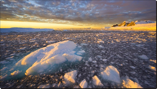Wiggins Glacier, Antarctica.jpg