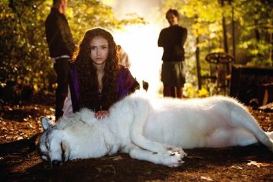 Lobo y Katherine/Ele