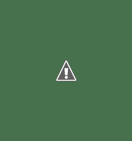 Traian Basescu, Un fleac, i-am ciuruit