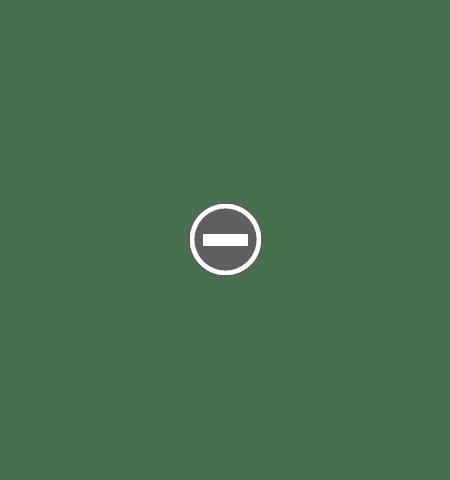 traian basescu un fleac i am ciuruit Traian Basescu:   Un fleac, i am ciuruit !