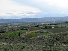 Cowiche Canyon overlooking Yakima