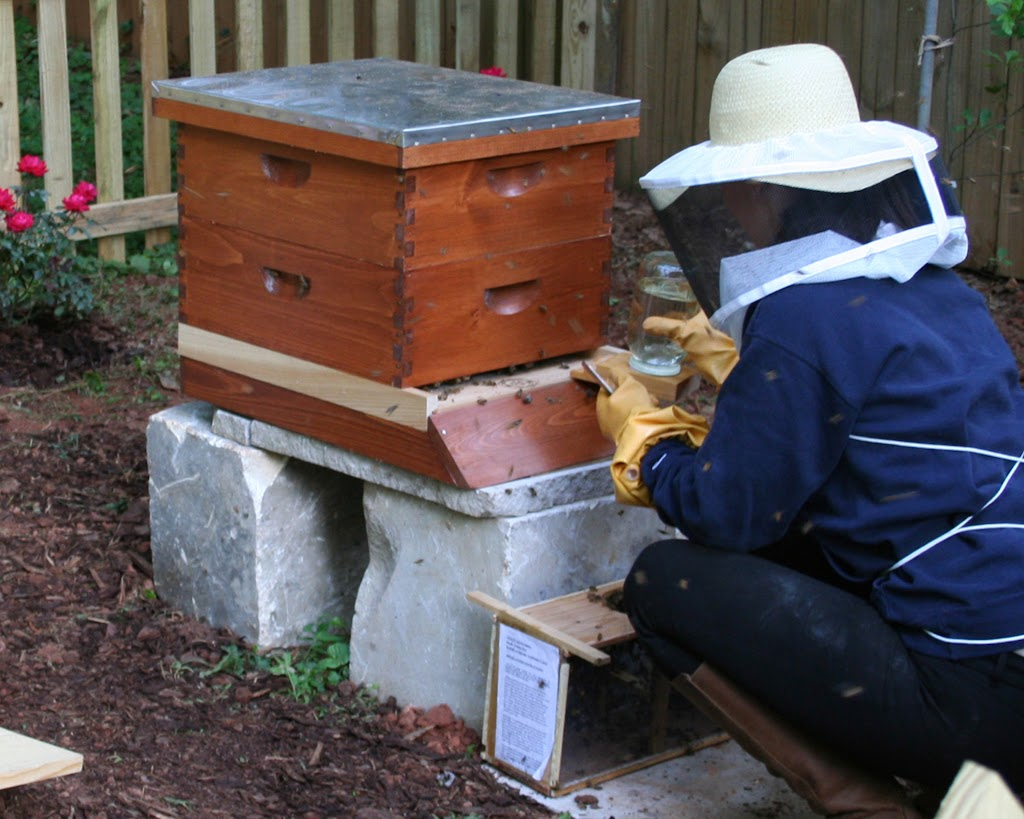 eighteenth century agrarian business beginning beekeeping