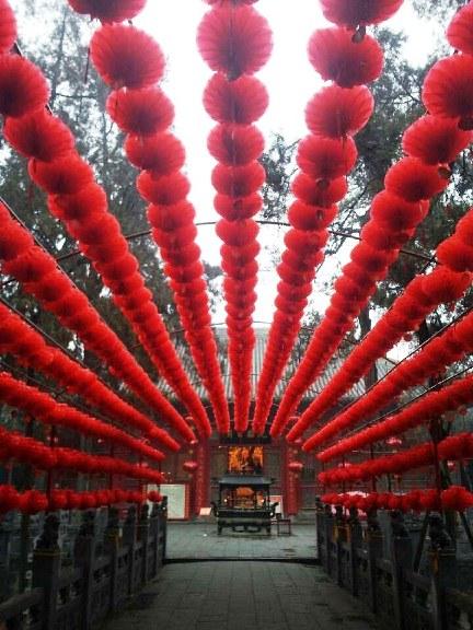 Lanterns in Luoyang