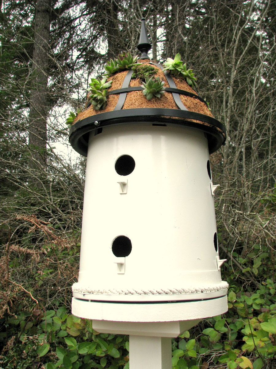 How to make a bird house - Here S How I Did It I Had One Of Those Black Plastic Buckets That You Get When You Buy Large Plants Lying Around That Was The Perfect Size