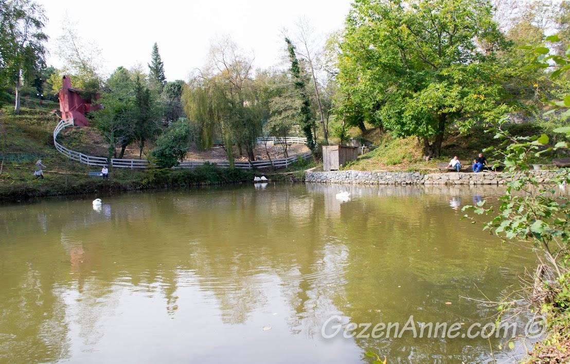 Piknik Park'taki gölet