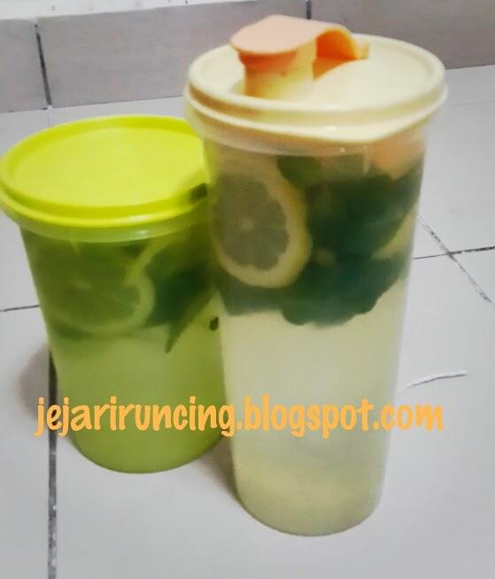 Resep Diet Praktis Dengan Infused Water