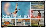 Deseda 2015. tavasz