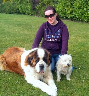 dog training classes Drumcondra, Dublin 9