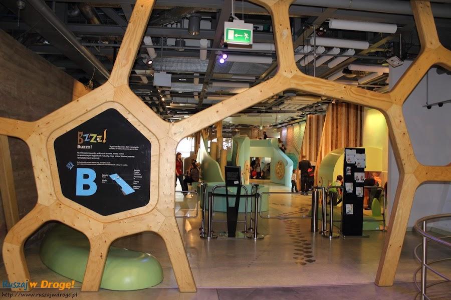 centrum nauki kopernik: bzzz - specjalna strefa dla małych dzieci