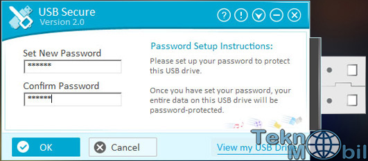 USB Secure v2.1.5 Full İndir