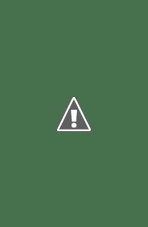 Plantilla para página de periódico, formato InDesign, con reportaje seccion sociedad (gastronomia, literatura, etc)