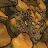 K Thierolf avatar image
