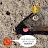 Jay Martinez avatar image