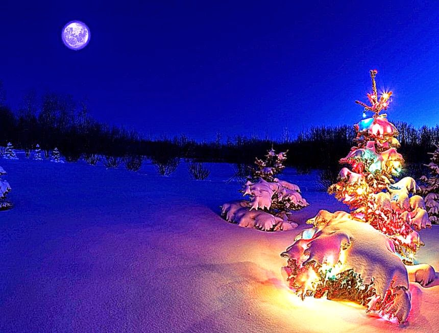 3d christmas desktop background