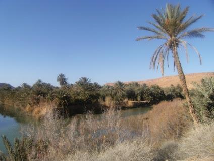 Oued Ziz südlich von Errachidia, Marokko