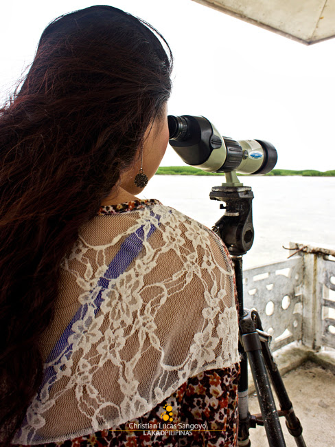 Bird Watching at Olango Island Wildlife Sanctuary in Cebu
