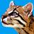 Dean Cooper avatar image