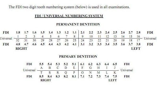 NDEB of Canada: Tooth Numbering System used In Exam