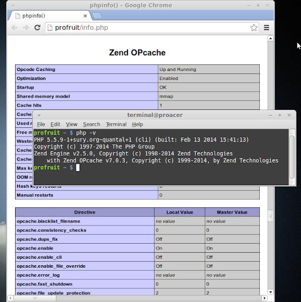 Failed loading opcache.so