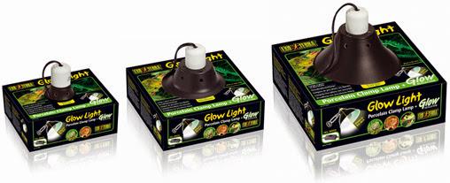 glow_light_packages_set.jpg