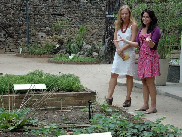ipe de jardim botânico:Todo dia é dia de jardinar: Plantio de ipê amarelo – Horto RJ