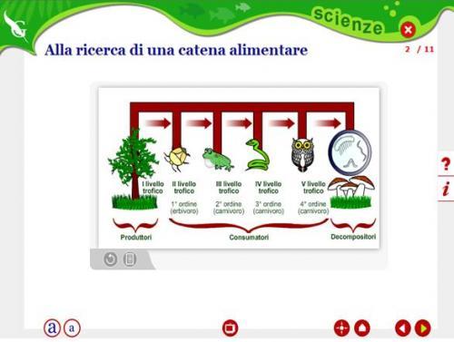 catene2