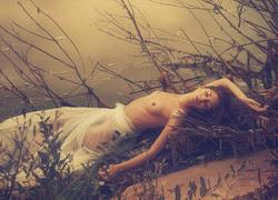 Ngủ quên giữa rừng