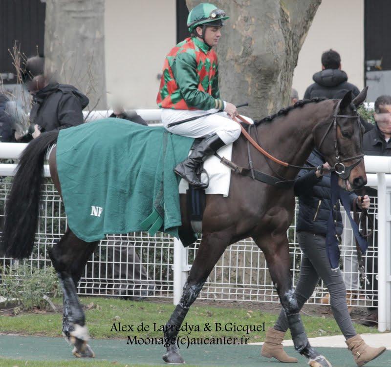 Photos Auteuil 1-03-2015 IMG_7185