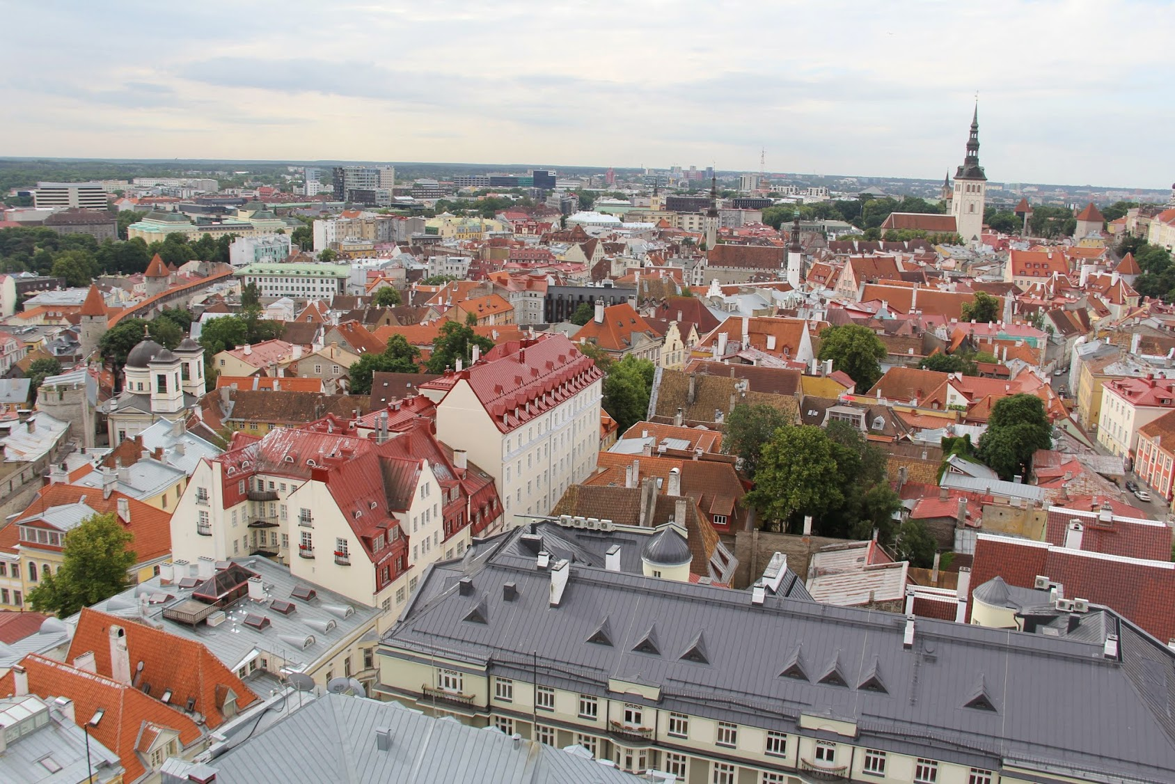 The Most Popular Tour in Tallinn