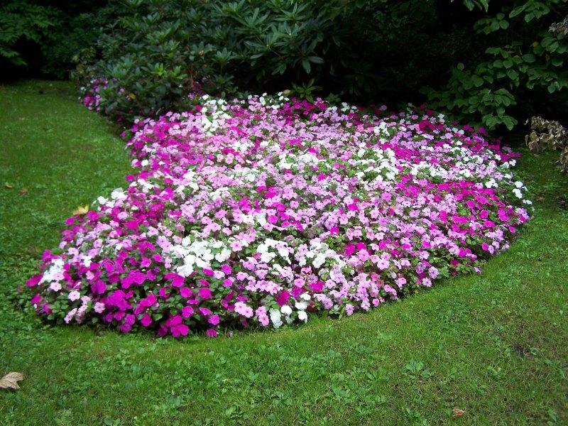 Crie jardim como fazer canteiros de flores no jardim for Jardines redondos pequenos