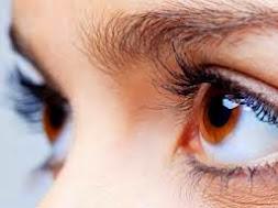 Herbal Ini Dapat Menyembuhkan Sindrom Mata Kering