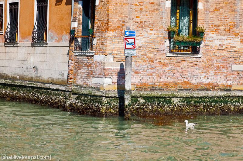 http://lh5.googleusercontent.com/-ndxTU_55NWM/S9oCCAxKcuI/AAAAAAAATVs/rro26fCIBws/s800/20100411-134811_Venice.jpg