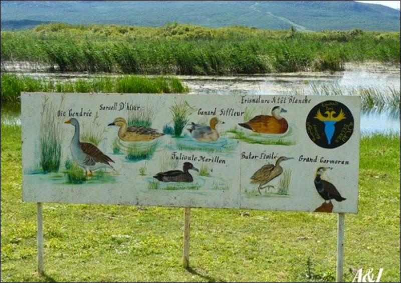 موسوعة شاملة عن المحميات الطبيعية - حصريا على منتدى واحة الإسلام - صفحة 2 Get-5-2010-wc2c018f