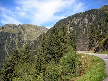 La route sort de la forêt