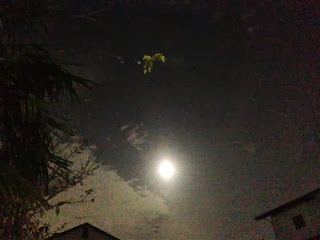 「2013年最後の満月」(RealKei JP 撮影)【『Kaos(カオスシチリア物語)】