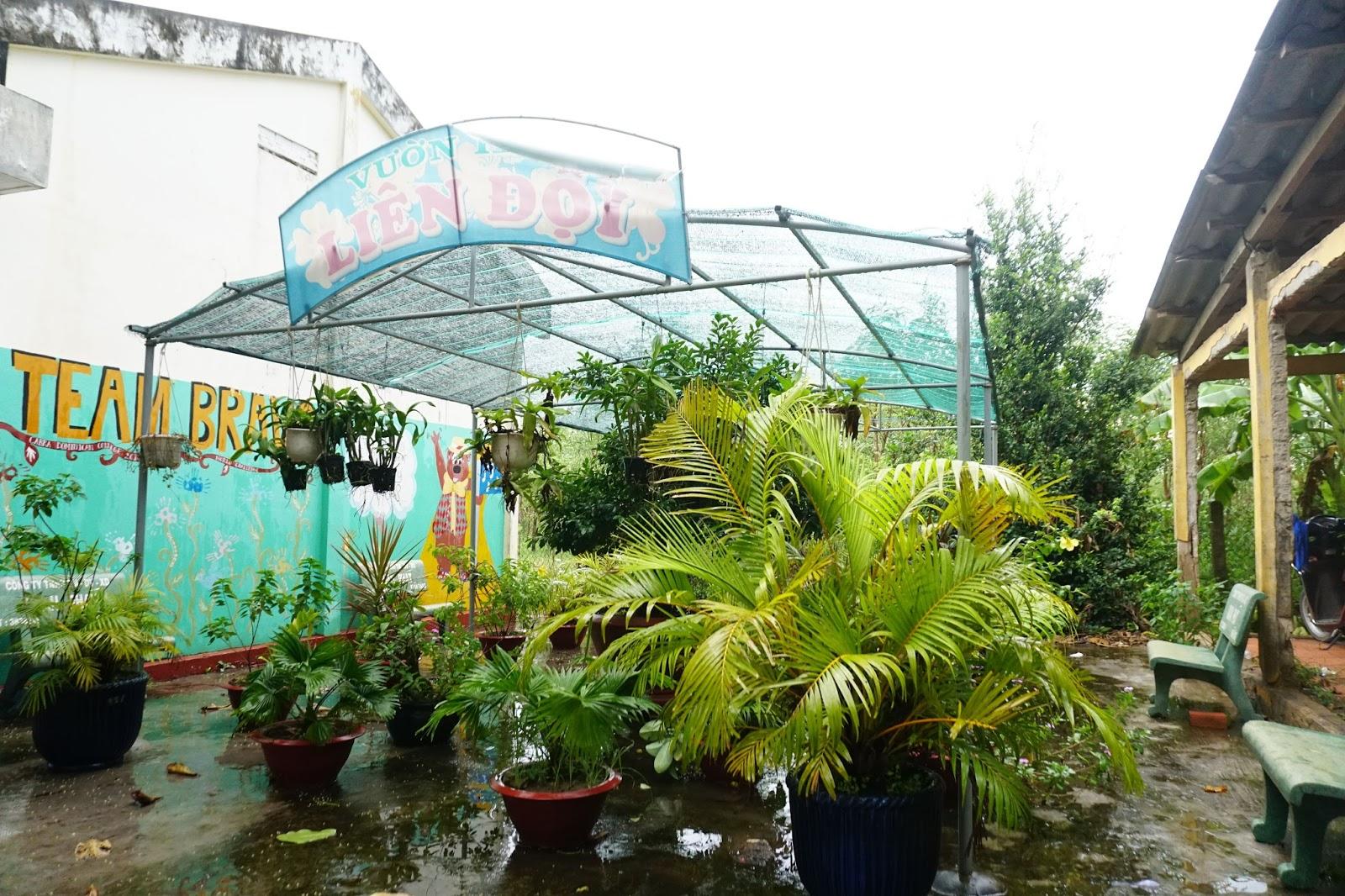 Khu vườn liên đội chỉ như vườn cây cảnh nhỏ ở Sài Gòn