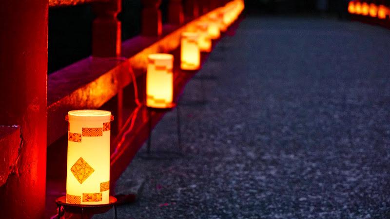 箱根 あじさい橋 ライトアップ 写真