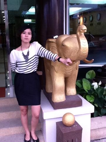 Golden Elephant High Top Shoes Photo
