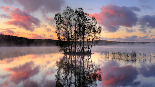 Island In the Middle of a Lake, Sweden.jpg