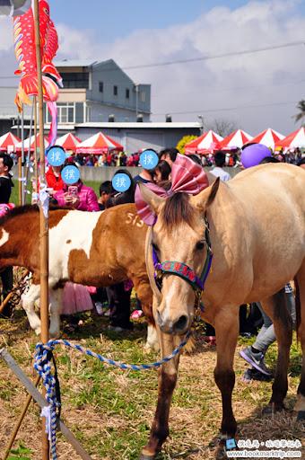 2014小麥文化節 - 可愛馬