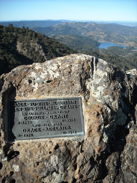 mt tam plaque