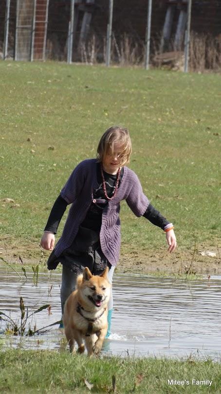 Balades canines en Nord (59)/Pas de Calais (62) - Boulogne-sur-Mer, Calais et Lille - Page 4 DSC01881