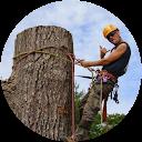 treescaler210
