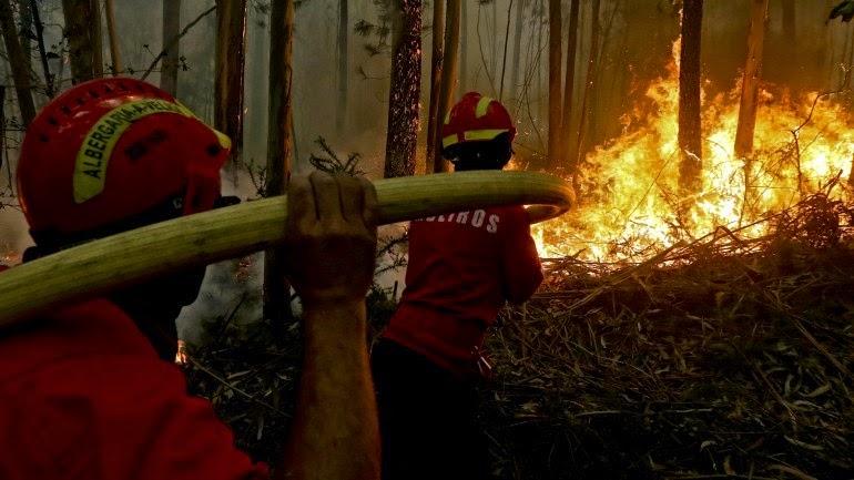 Cinquenta e cinco bombeiros combatem fogo florestal em Lamego