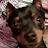 Katelyn West avatar image