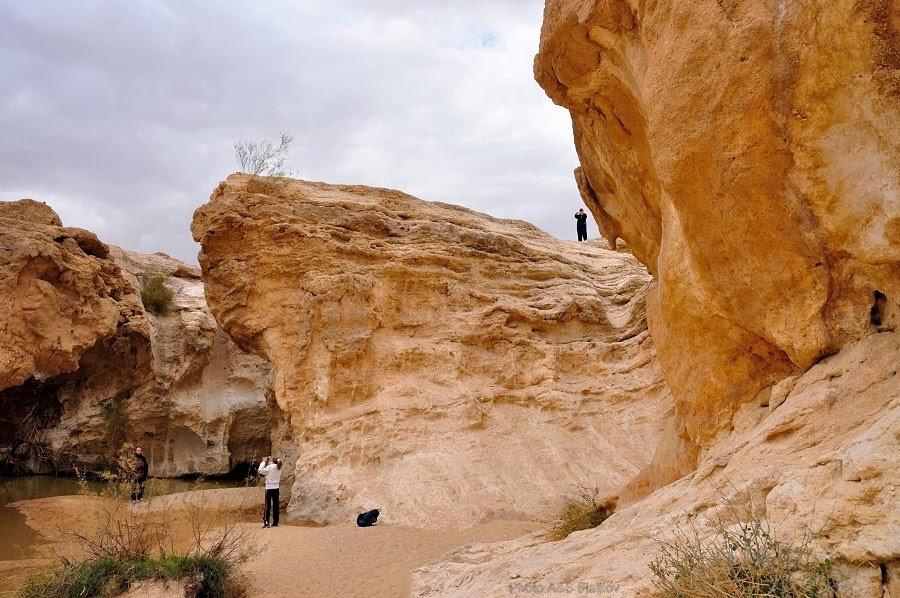 Фотографы в Эйн Йоркам. Экскурсия гида Светланы Фиалковой в пустыню Негев.