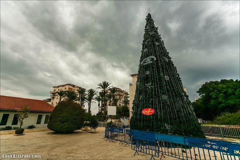 LookAtIsrael.com: Рождественская ёлка в Яффо (israel  яффо тель авив праздник одно фото )