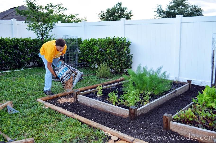 How to Build a Timber Garden Border Vegetable Garden Tips Sew